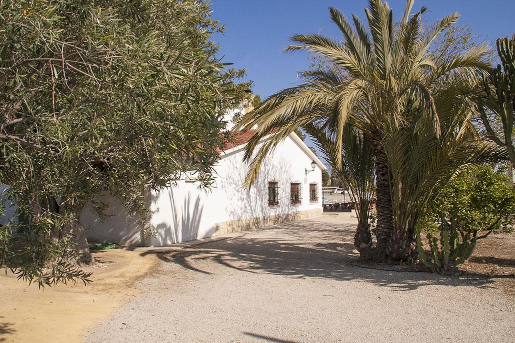 Finca en Alicante